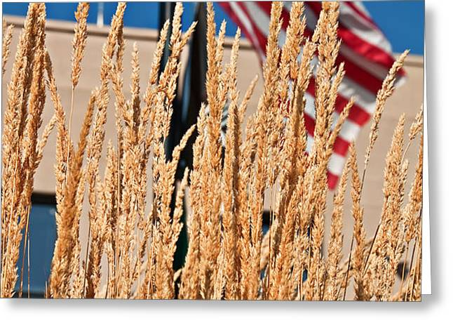 Amber Waves of Grain and Flag Greeting Card by Valerie Garner