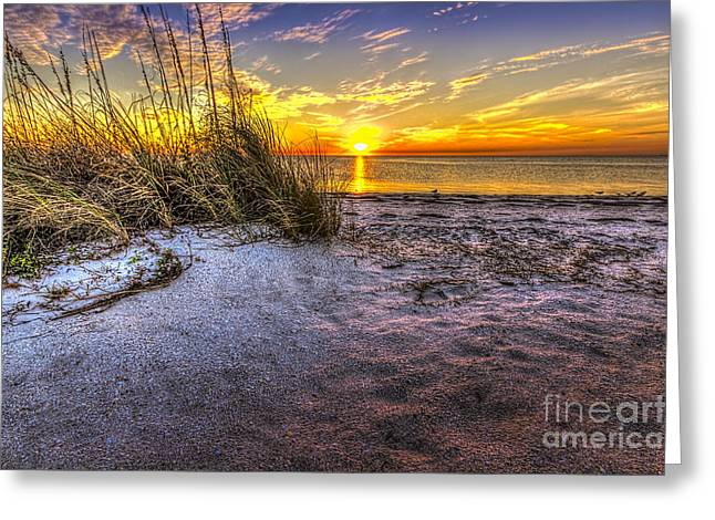 Ambience Of The Gulf Greeting Card by Marvin Spates