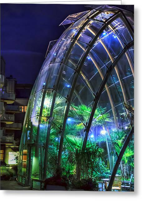 Comfort Zone Greeting Cards - Ambient Greenhouse Greeting Card by EXparte SE