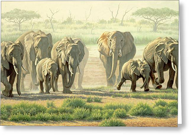 Elephants Greeting Cards - Amboseli Promenade Greeting Card by Paul Krapf
