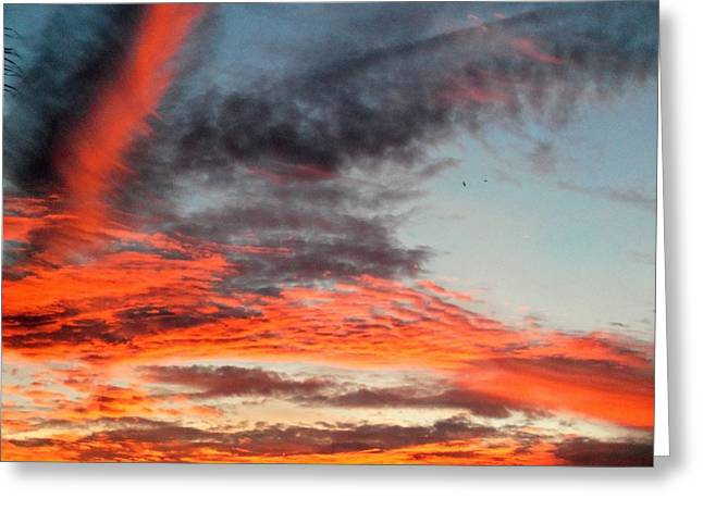 Colorful Cloud Formations Greeting Cards - Amelia Sunrises 29 Greeting Card by Ron Kandt