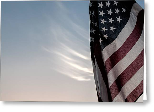 Veterans Day Greeting Cards - America Greeting Card by Peter Tellone