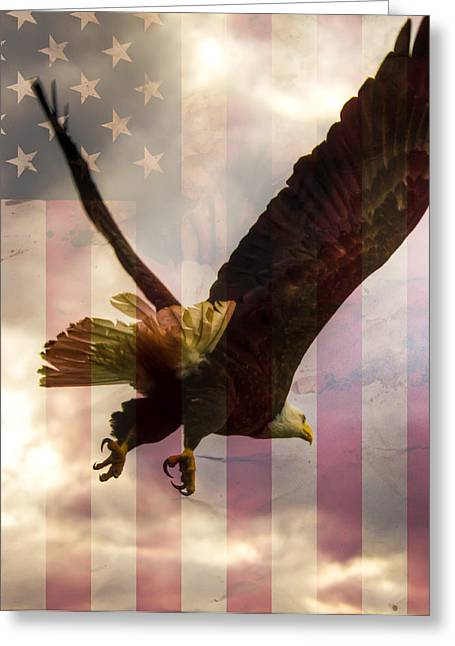 Obama Photographs Greeting Cards - American Bald Eagle In Flight wtih Flag Greeting Card by Natasha Bishop