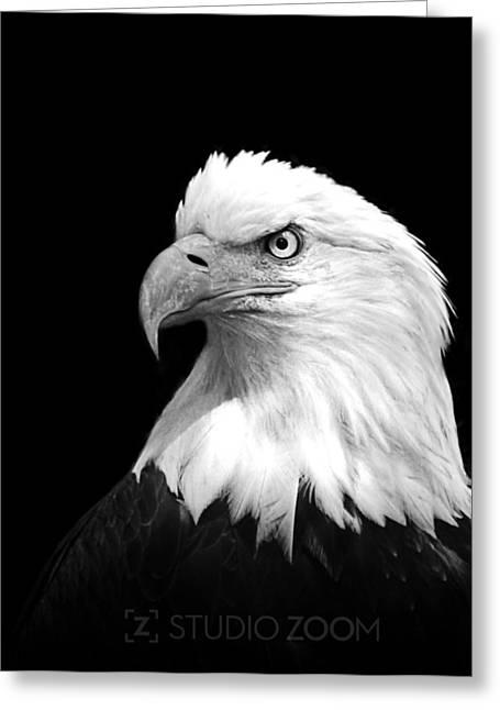 Animal Patriotic Art Greeting Cards - American Bald Eagle Greeting Card by Julie Keller