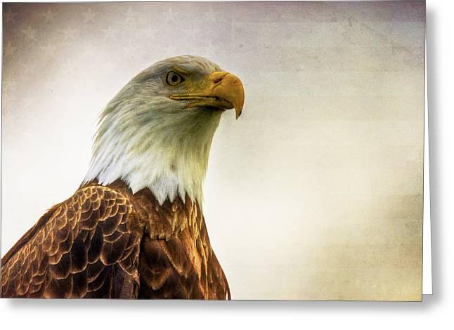 American Bald Eagle With Flag Greeting Card by Natasha Bishop