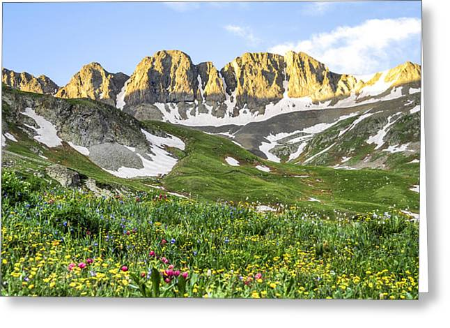 Timberline Greeting Cards - American Basin Wildflowers Greeting Card by Aaron Spong