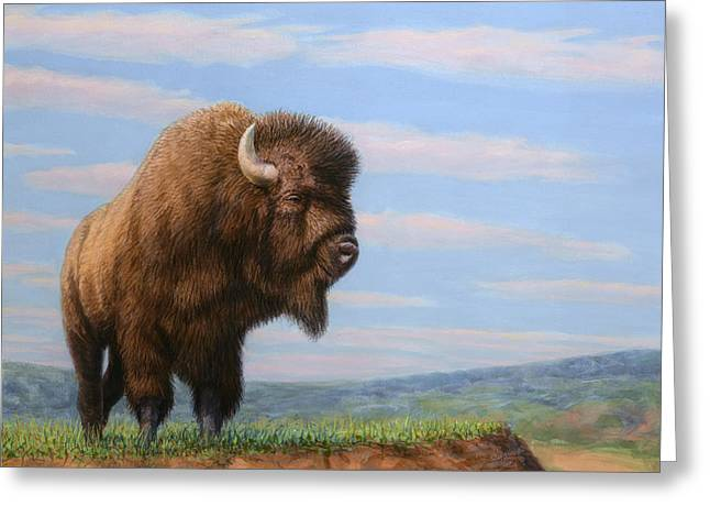 Drawings Greeting Cards - American Bison Greeting Card by James W Johnson