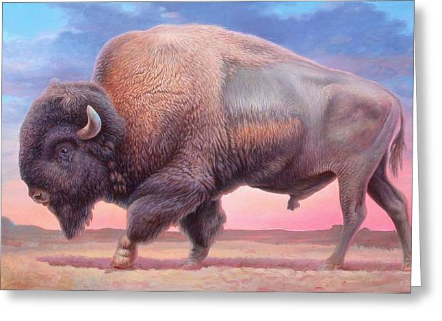 American Buffalo Greeting Cards - American Buffalo Greeting Card by Hans Droog