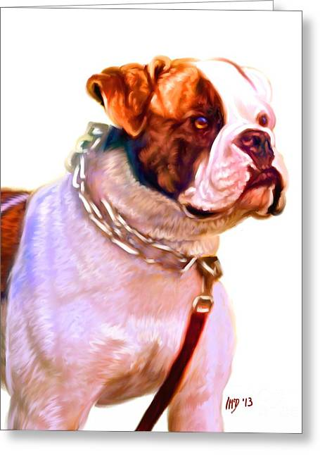 Bulldog Puppies Pictures Greeting Cards - American Bulldog White Background Greeting Card by Iain McDonald