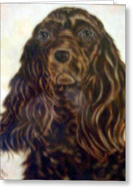 Pat Mchale Greeting Cards - American Cocker Spaniell Greeting Card by Pat Mchale