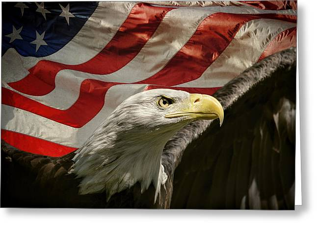 Flag Of Usa Greeting Cards - American Eagle Greeting Card by Jai Johnson