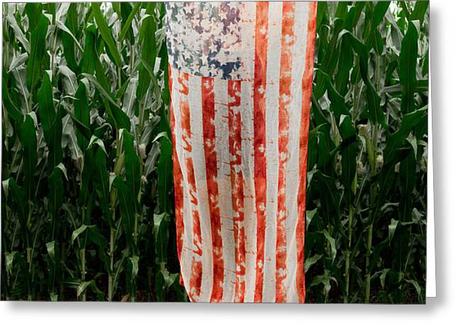 American Flag and a Field of Corn Greeting Card by Kim Fearheiley