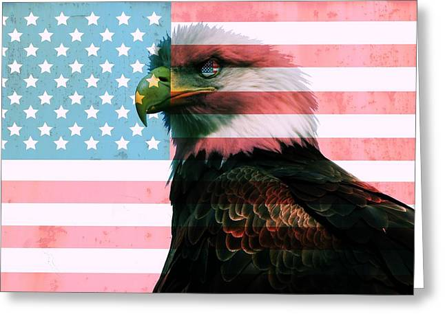 Flag Of Usa Greeting Cards - American Flag And Bald Eagle Greeting Card by Dan Sproul