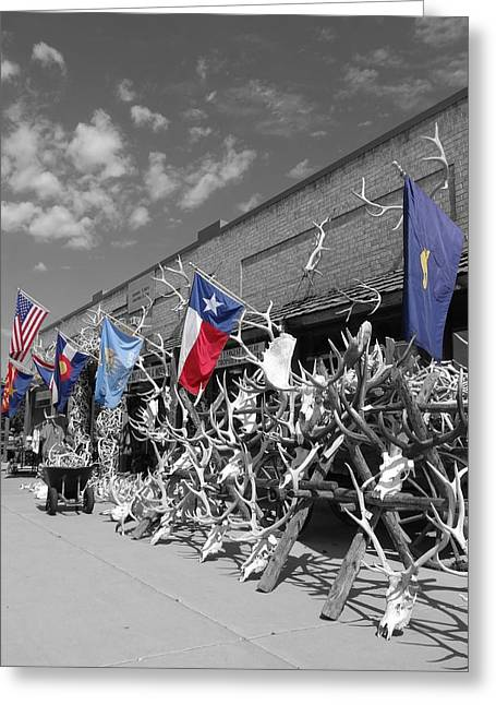 Hunting Trophy Greeting Cards - American Flag Colorado Flag Texas Flag And Antlers Greeting Card by Dan Sproul