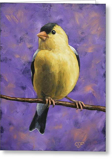 American Goldfinch Greeting Cards - American Goldfinch Greeting Card by Crista Forest
