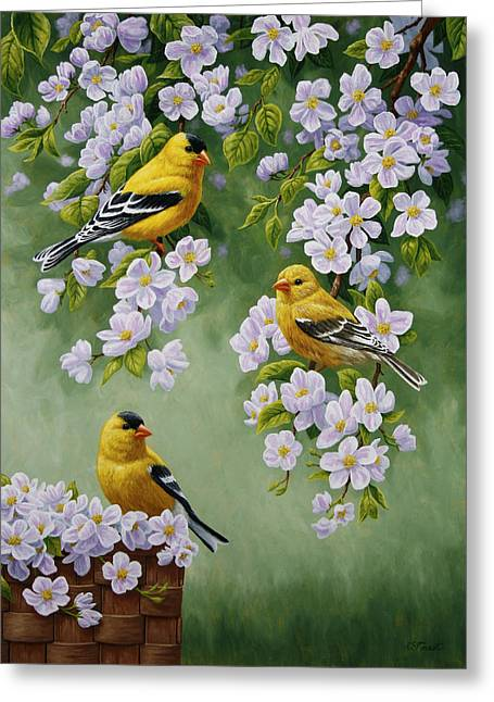 Pink Blossoms Greeting Cards - American Goldfinch Spring Greeting Card by Crista Forest