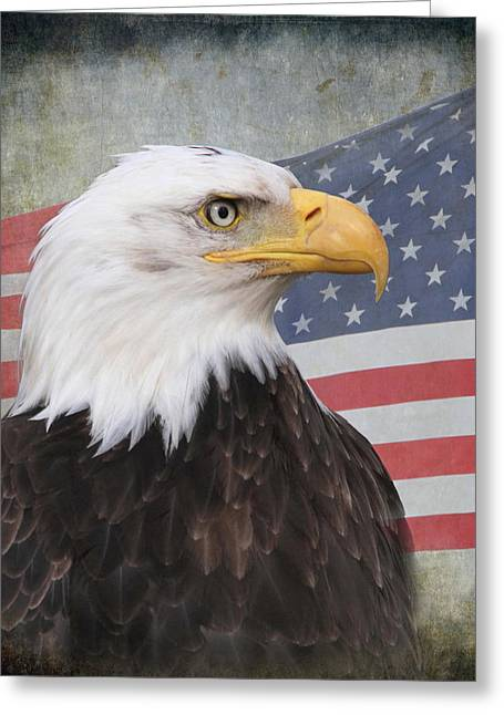 Eagle Feathers Greeting Cards - American Pride Greeting Card by Angie Vogel