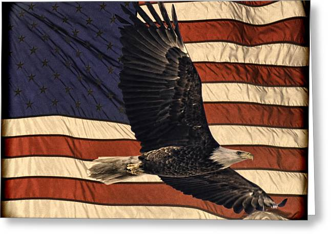Flag Of The United States Greeting Cards - American Pride Greeting Card by Thomas Young