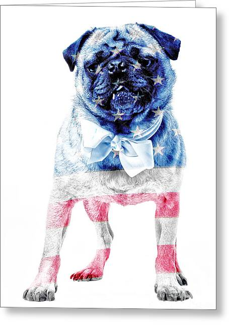 Friendly Greeting Cards - American Pug Greeting Card by Edward Fielding