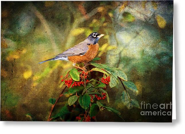 Thrush Greeting Cards - American Robin - Harbinger of Spring Greeting Card by Lianne Schneider