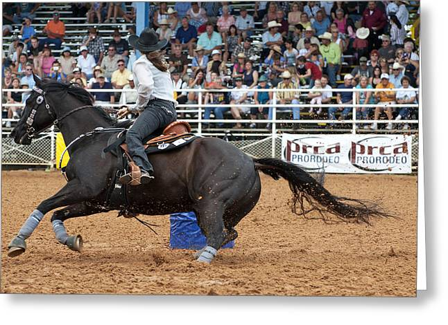 American Rodeo Female Barrel Racer Dark Horse II Greeting Card by Sally Rockefeller