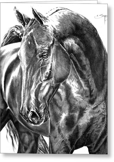 Painted Puppies Drawings Greeting Cards - American Saddlebred Horse Greeting Card by Elizabeth Sage