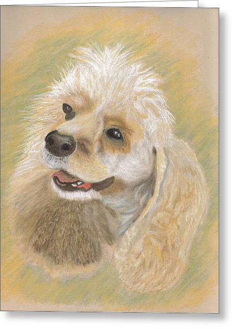 Spaniel Pastels Greeting Cards - American Spaniel Greeting Card by Brian Thompson