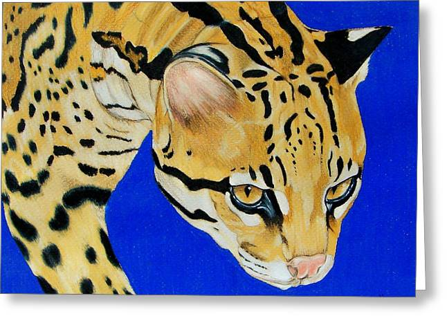 Wildcats Drawings Greeting Cards - American Stalker Greeting Card by Lea Sutton