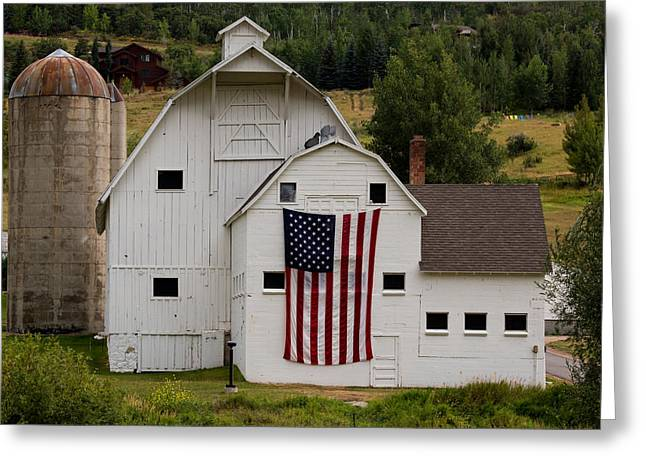 John Daly Greeting Cards - Americana Greeting Card by John Daly