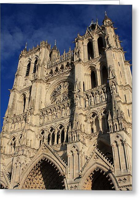 Weeping Greeting Cards - Amiens Cathedral France Greeting Card by Aidan Moran