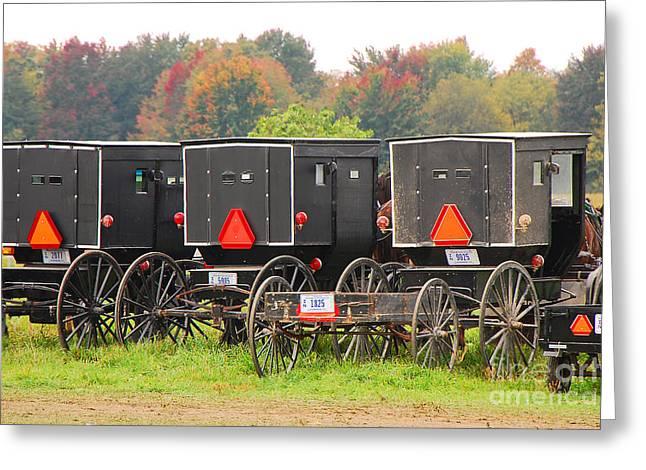 Amish Buggies 2 Greeting Card by Mary Carol Story