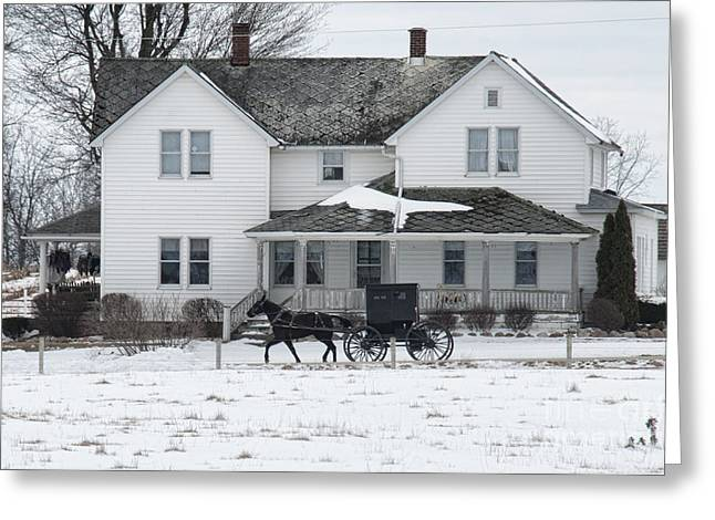 Horse And Buggy Greeting Cards - Amish Buggy and Amish House Greeting Card by David Arment