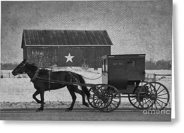 Rural Indiana Greeting Cards - Amish Buggy and Star Barn BW Greeting Card by David Arment