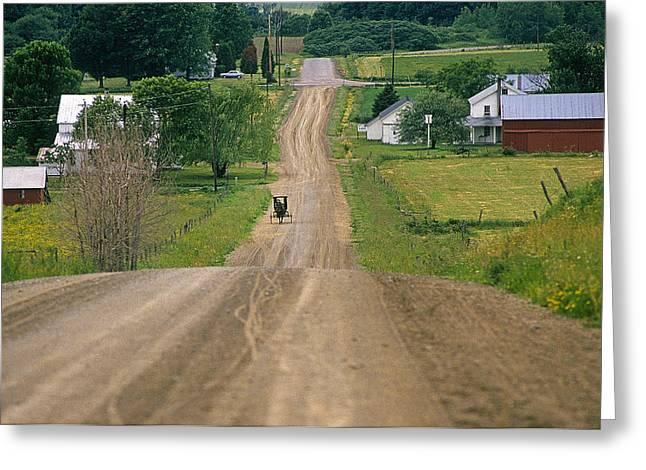 Amish Community Greeting Cards - Amish Buggy Greeting Card by Buddy Mays