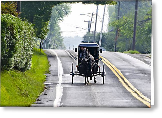 Amish Greeting Cards - Amish Buggy in Lancaster County Pa. Greeting Card by Bill Cannon