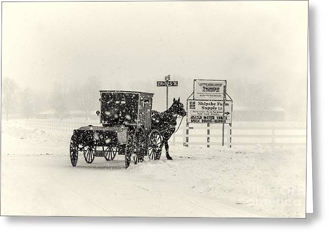 Amish Photographs Greeting Cards - Amish Buggy in Snow Storm Greeting Card by David Arment