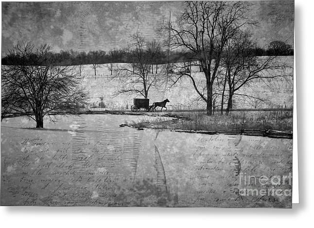 Rural Indiana Greeting Cards - Amish Buggy in Winter LaGrange Greeting Card by David Arment