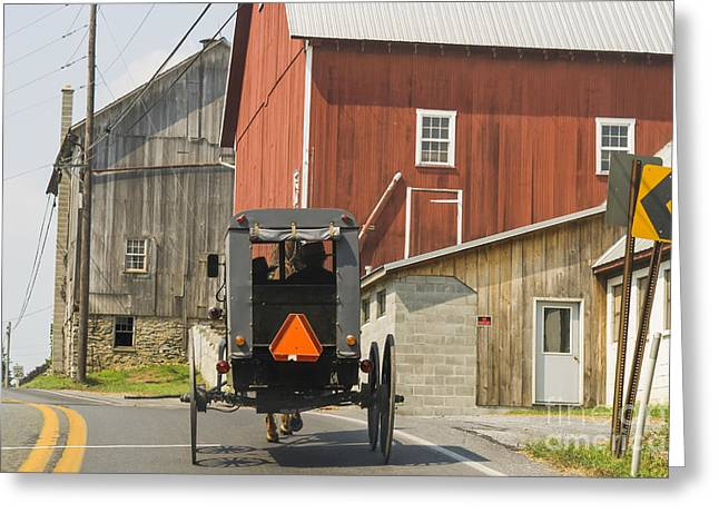 Amish Girl Greeting Cards - Amish buggy Greeting Card by Patricia Hofmeester