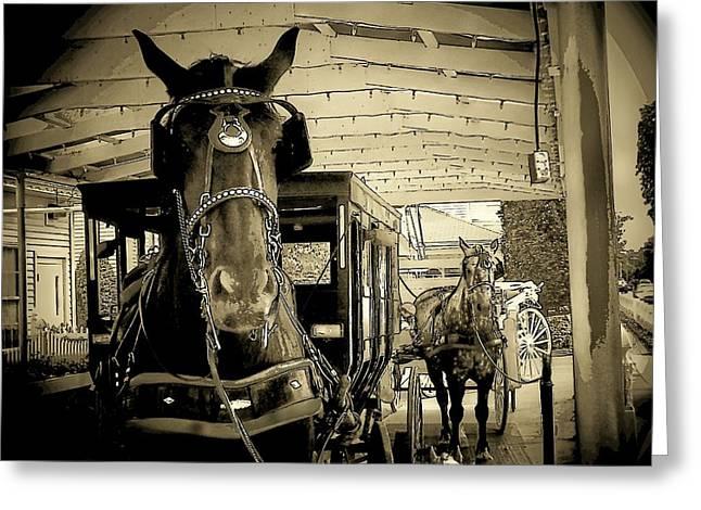 Amish Greeting Cards - Amish Buggy Rides Greeting Card by Michael L Kimble