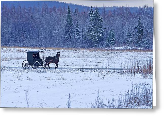 Winter In Maine Greeting Cards - Amish Carriage Greeting Card by Jack Zievis
