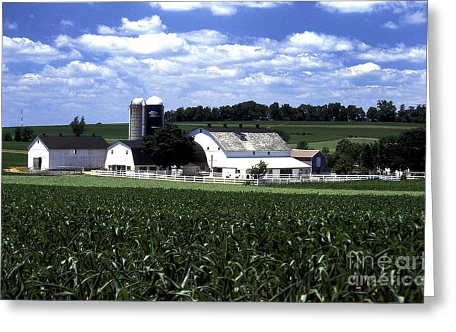 Amish Greeting Cards - Amish Country - 38 Greeting Card by Paul W Faust -  Impressions of Light