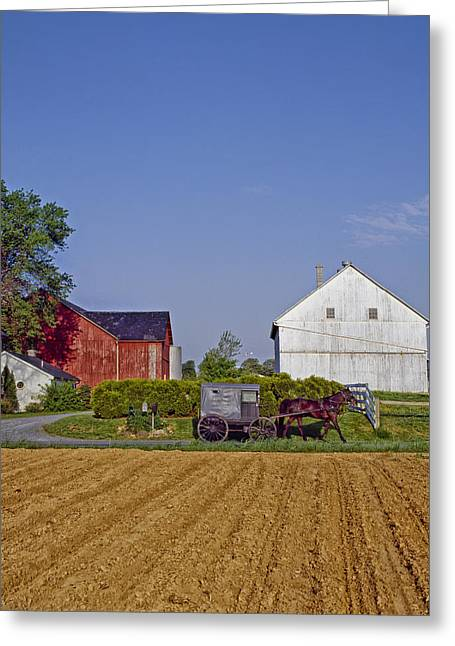 Amish Farm Greeting Cards - Amish Country Greeting Card by Mountain Dreams