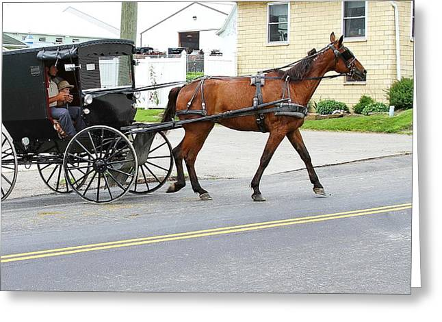 Amish Father Greeting Cards - Amish Country Greeting Card by David Byron Keener