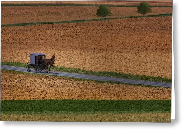 Amish Greeting Cards - Amish Country Lancaster Pennsylvania Greeting Card by Susan Candelario