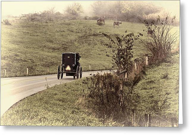 Up And Coming Greeting Cards - Amish Country Greeting Card by Marcia Colelli