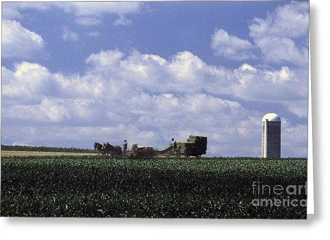 Amish Greeting Cards - Amish country Greeting Card by Paul W Faust -  Impressions of Light