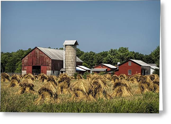 Amish Community Greeting Cards - Amish Farm Wheat Stack Harvest Greeting Card by Kathy Clark