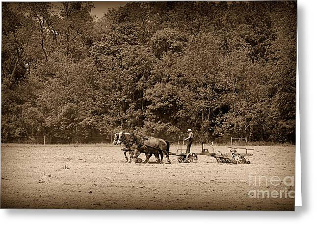 Amish Greeting Cards - Amish Farmer Tilling The Fields in black and white Greeting Card by Paul Ward
