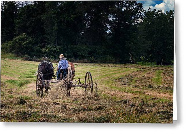 Horse Pulling Wagon Greeting Cards - Amish Farming Greeting Card by Tom Mc Nemar
