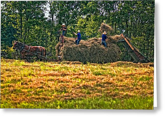 Haying Greeting Cards - Amish Harvest Greeting Card by Steve Harrington